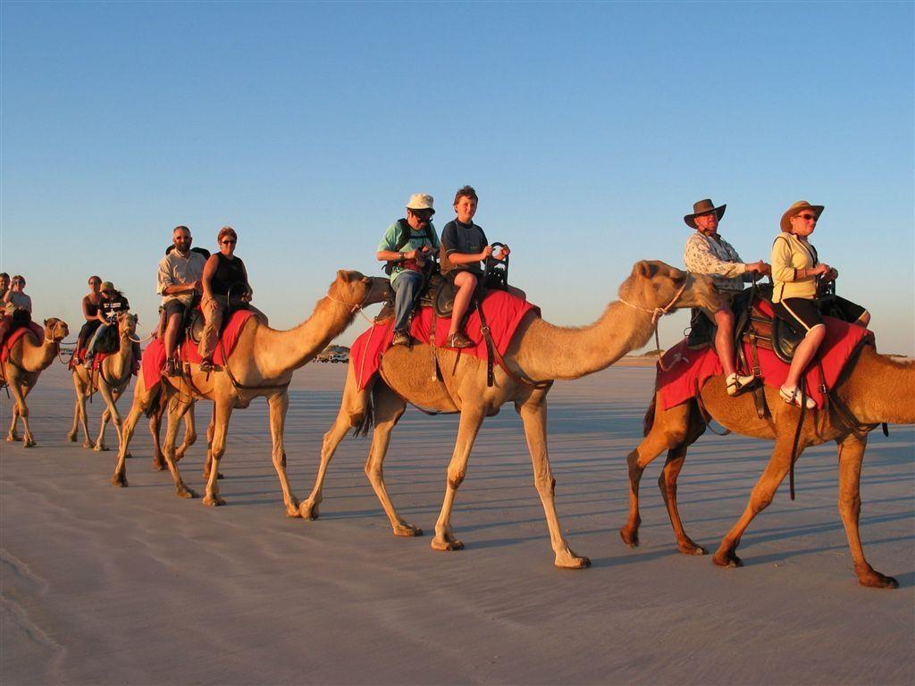 Rutas en Camello-www.visitasguiadasegipto.com