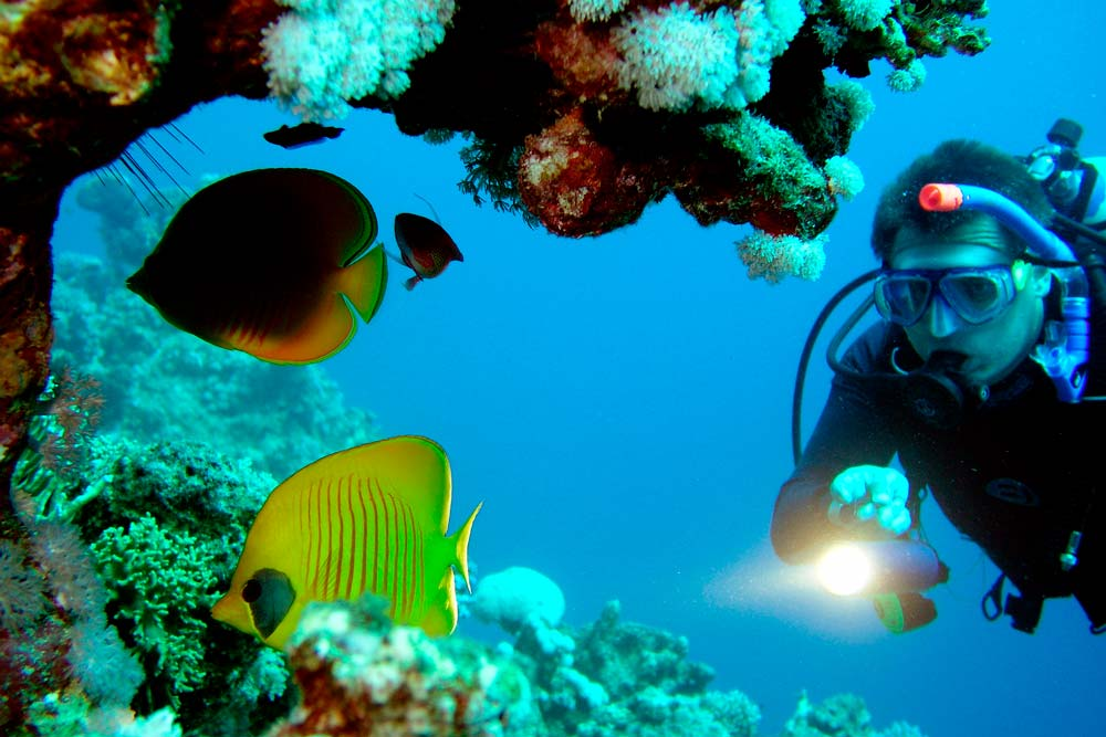 Buceando en el Mar Rojo-www.visitasguiadasegipto.com