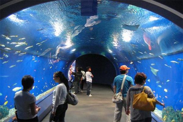 Aquario Hurghada-www.visitasguiadasegipto.com