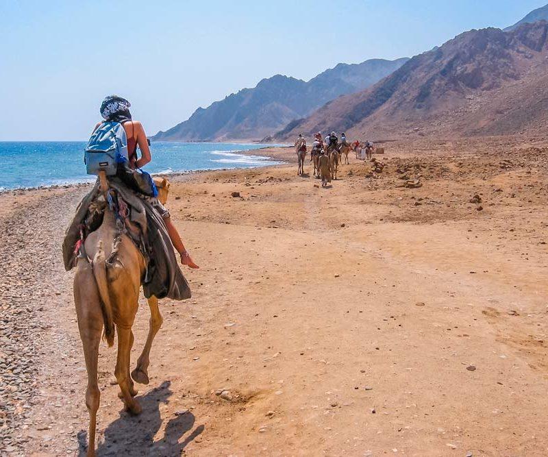 Paseo en Camello a la orilla del mar-www.visitasguiadasegipto.com